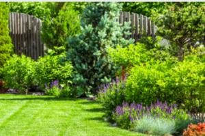 Landscape Design Adelaide